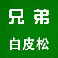 #劳动最光荣#扎根天津卫,辐射京津冀。兄弟白皮松天津基地开工